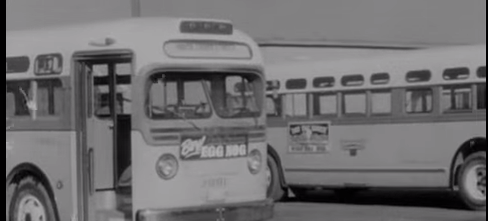 On this day in 1955 the Montgomery Bus Boycott began as a result the arrest of Rosa Parks