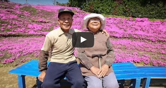 Husband Plants Field of Flowers for Blind Wife to Smell